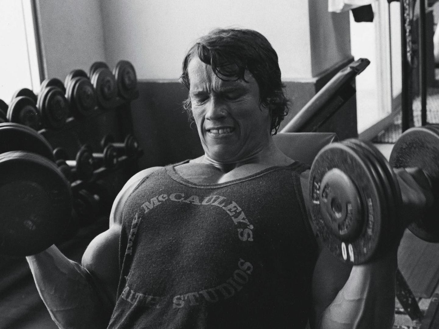 1440x1080_arnold-schwarzenegger-sports-bodybuilding-dumbbells