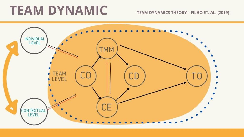 Team Dynamics Theory – Filho et. al. psicolodi dello sport stefania lucia